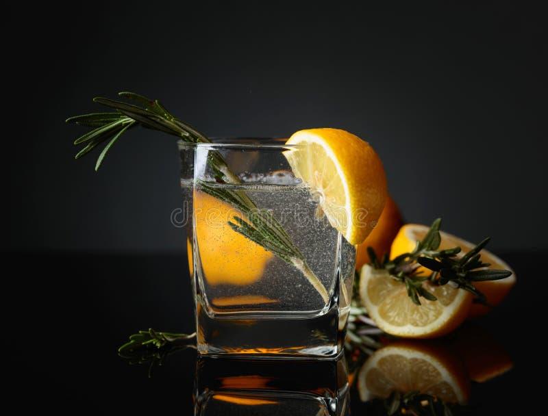 Cocktailginstärkungsmittel mit Zitronenscheiben und den Zweigen des Rosmarins stockbilder