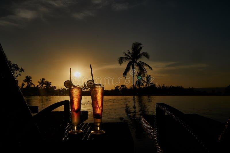 Cocktails exotiques froids de boissons alcoolisées d'été frais photo stock