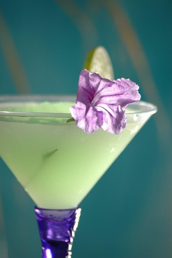 Cocktails tropicaux 4 photographie stock