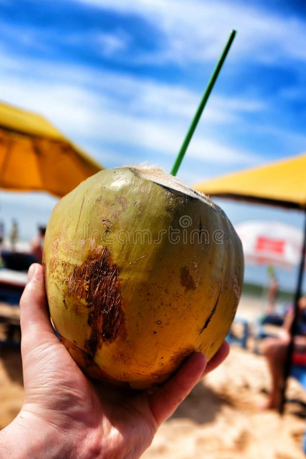 Download Coco imagem de stock. Imagem de coco, bebida, tendo, ásia - 65575617