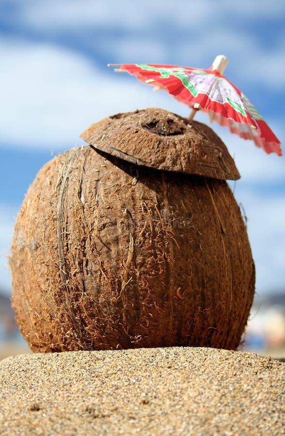 Coco-Cocktail stockfotos