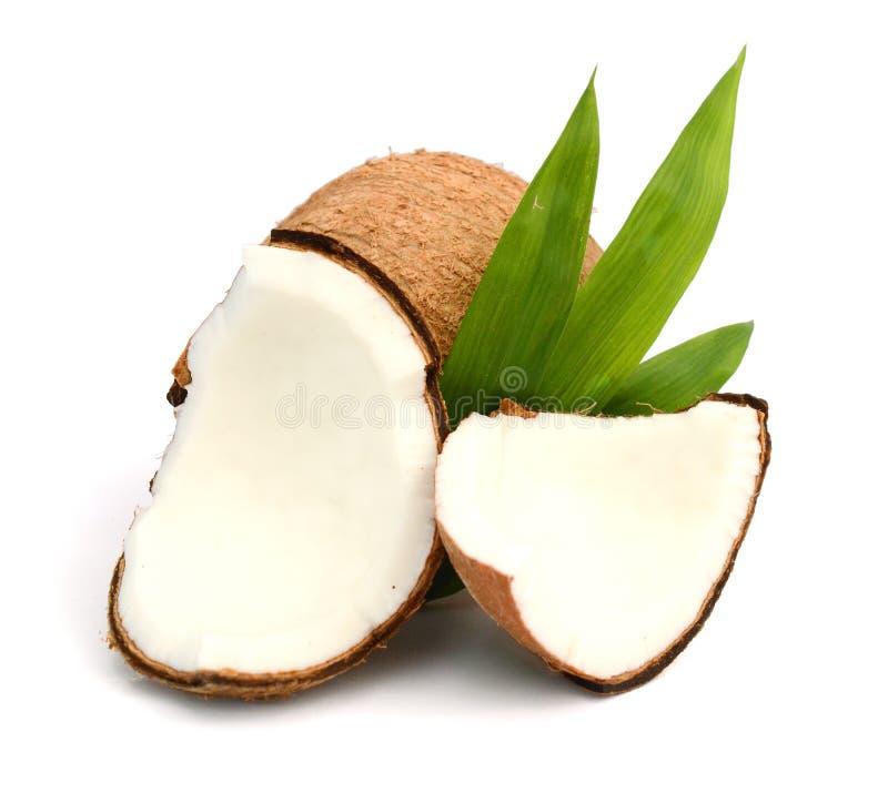 Coco con las hojas foto de archivo