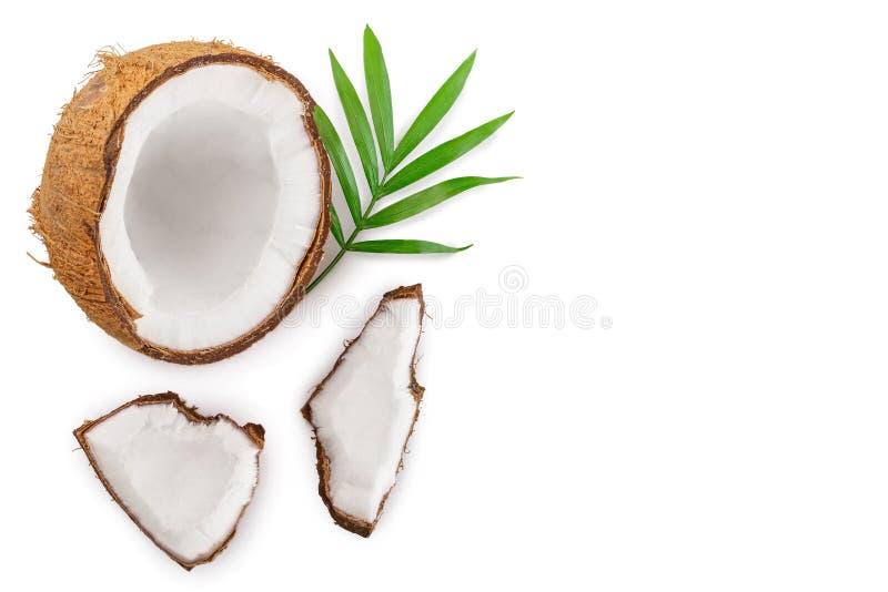 Coco con las hojas aisladas en el fondo blanco con el espacio de la copia para su texto Visi?n superior Endecha plana ilustración del vector