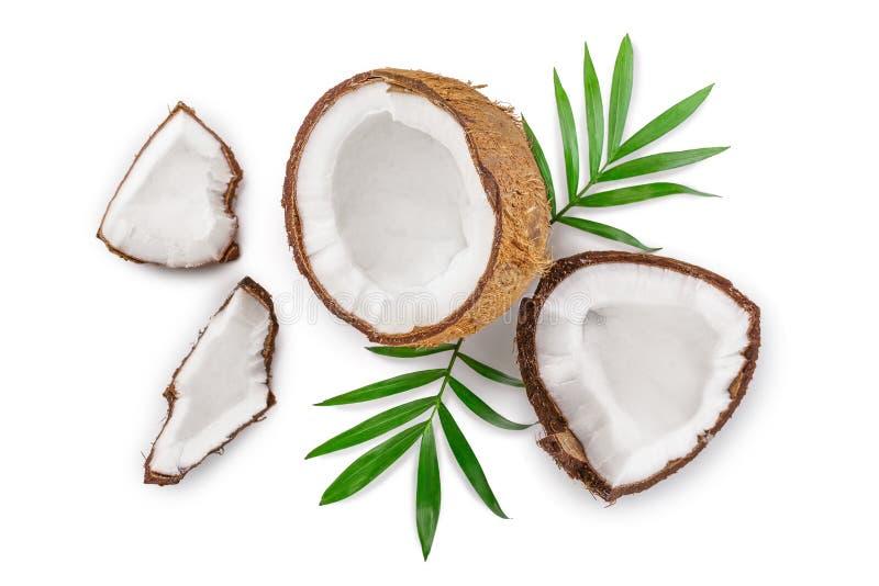 Coco con las hojas aisladas en el fondo blanco Visi?n superior Endecha plana libre illustration