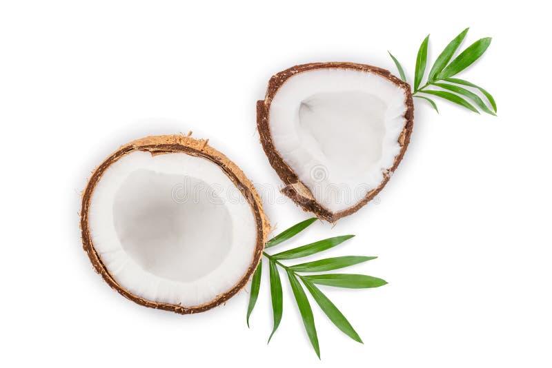 Coco con las hojas aisladas en el fondo blanco Visi?n superior Endecha plana stock de ilustración