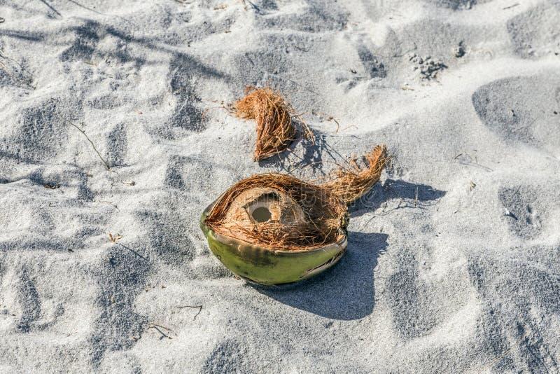 Download Coco en la playa imagen de archivo. Imagen de fruta, objeto - 44850877