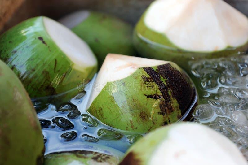 Coco fresco imagen de archivo libre de regalías