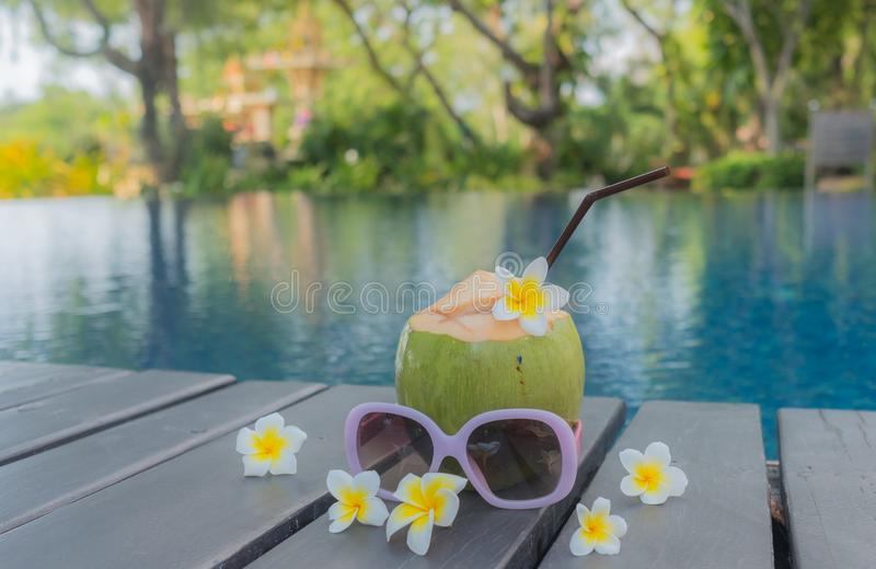 Coco, gafas de sol y sombrero en la piscina Concepto del verano imagen de archivo