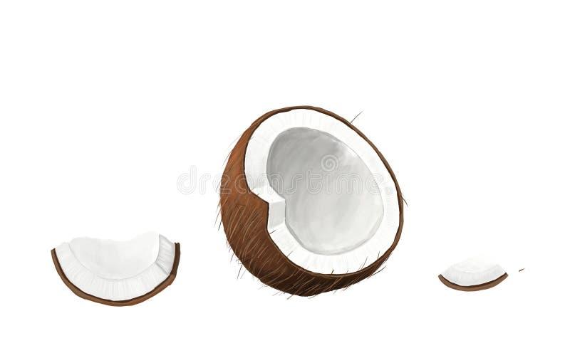 Coco isolado no fundo branco ilustração stock