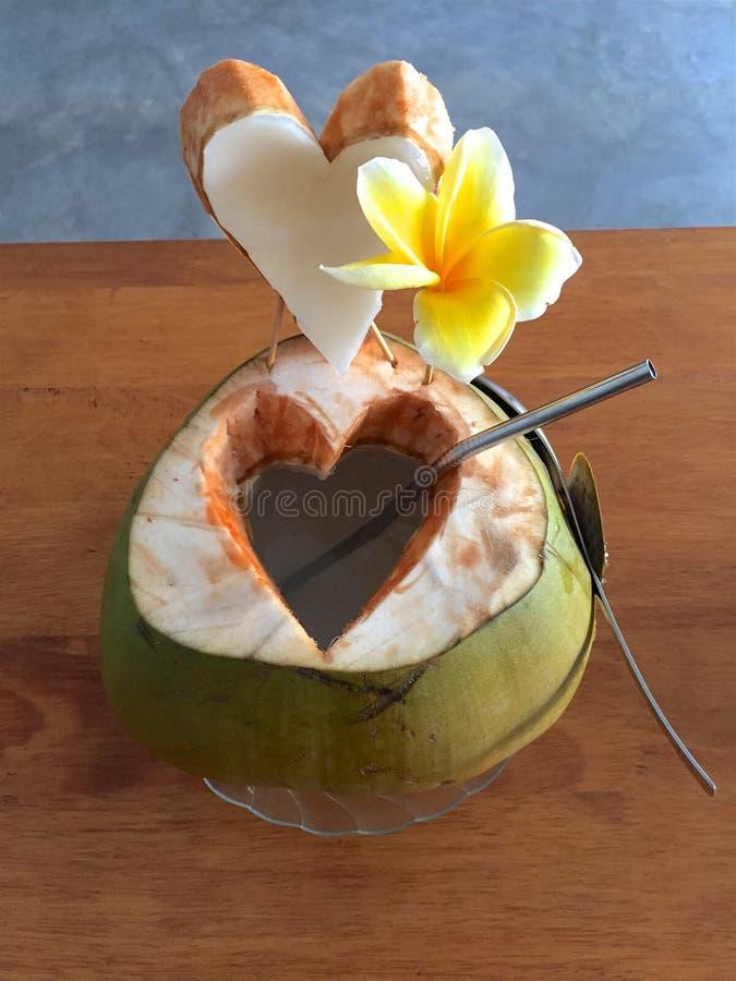 Coco joven maravillosamente adornado con la flor del francipani foto de archivo