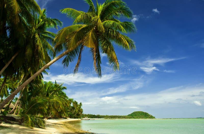 Coco Palm Beach em Tailândia imagens de stock