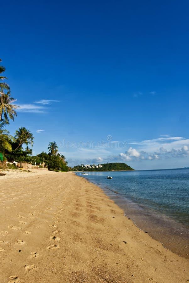 Coco Palm Beach em Tailândia fotografia de stock