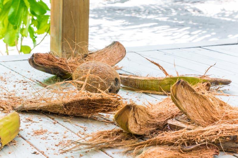Coco semi descascado com fibra no assoalho de madeira branco fotografia de stock royalty free