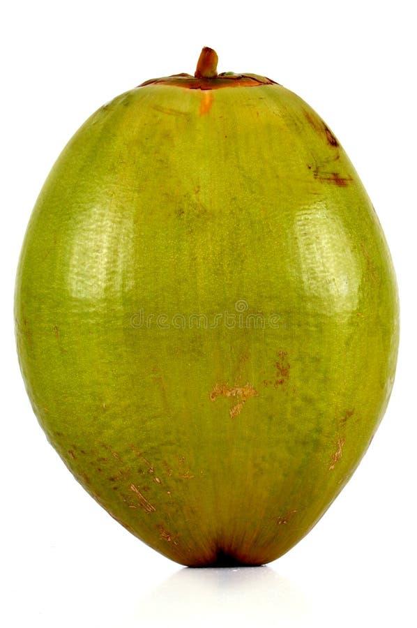 Coco verde fotos de archivo