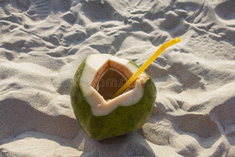 Coco verde fresco com um tubo na areia branca na praia em Tailândia Fim acima foto de stock royalty free