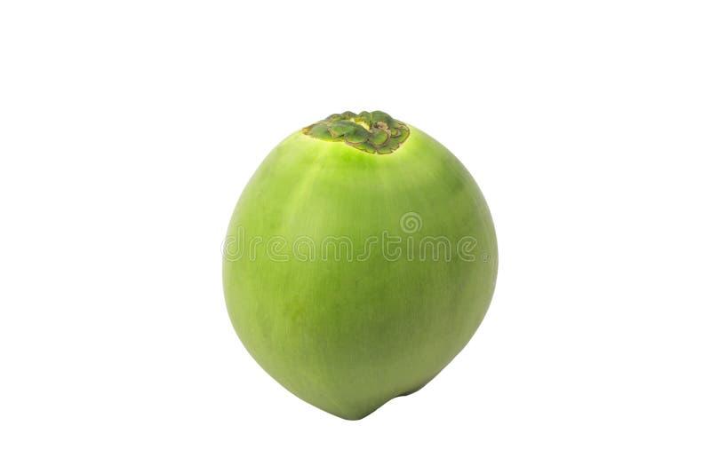 Coco verde fresco isolado, trajeto de grampeamento imagem de stock