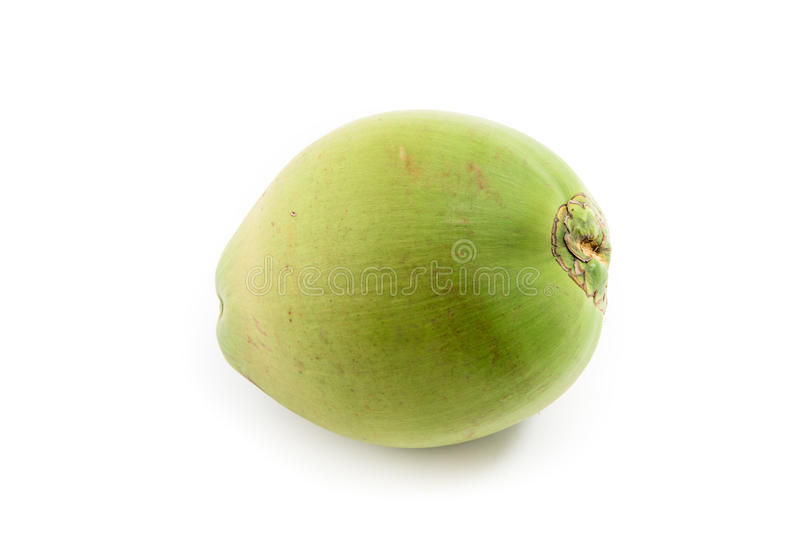 Coco verde no branco fotografia de stock