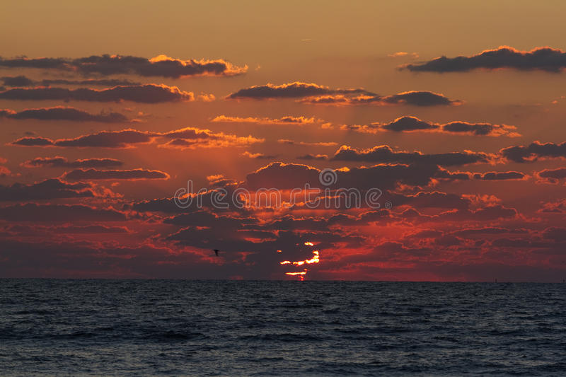 Download Cocoa Beach Sunrise stock image. Image of horizon, cloudy - 31335609