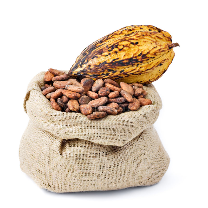 Cocoa Bean And Pod Royalty Free Stock Images