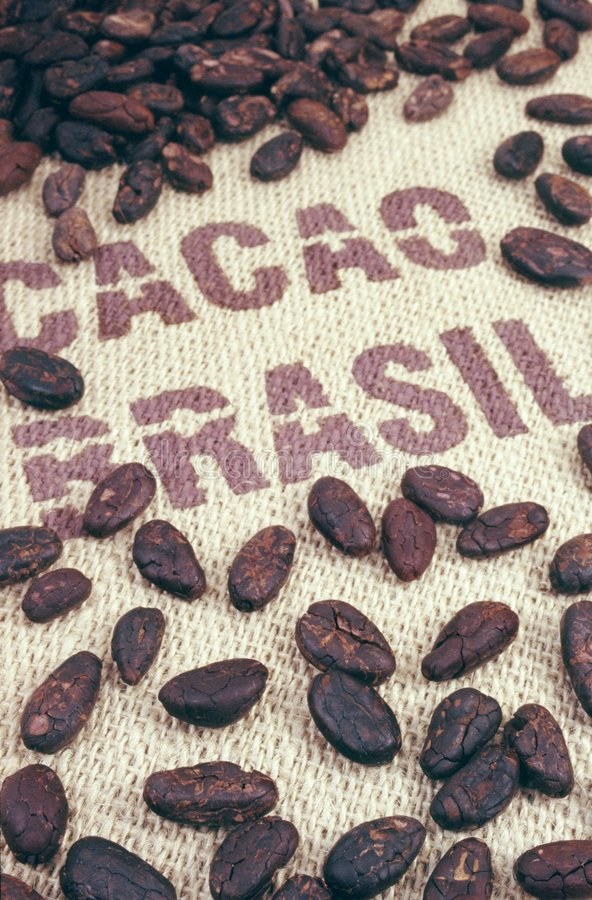 Cocoa beans and hessian. An image of cocoa beans and hessian stock photo