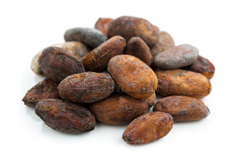 Cocoa beans on white background, isolated. On white royalty free stock photo
