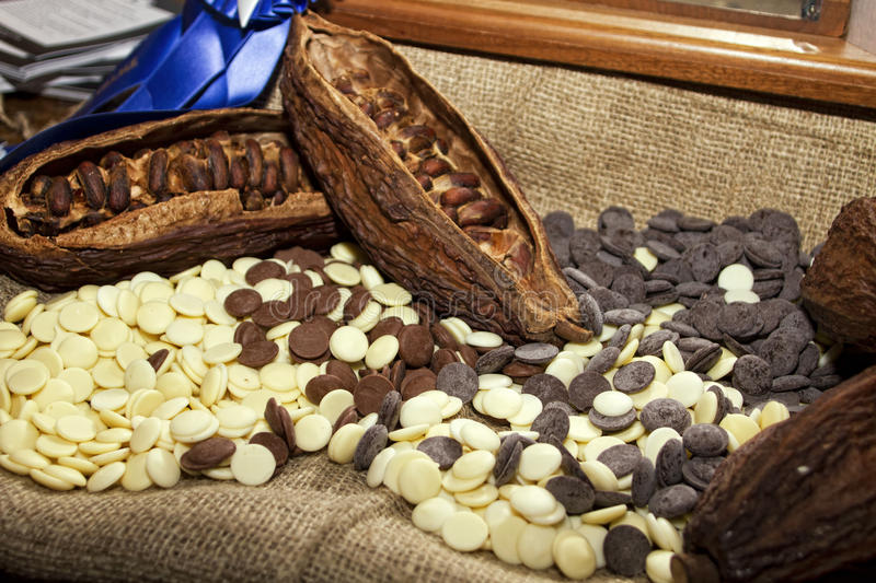 Cocoa Beans With White And Dark Chocolate Stock Photography