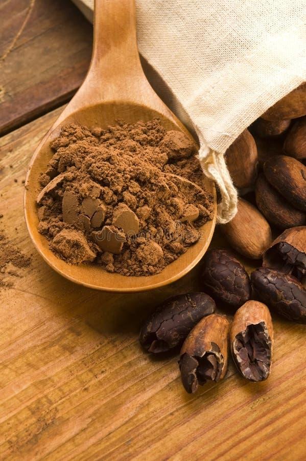 Free Cocoa (cacao) Beans Stock Photos - 25253983
