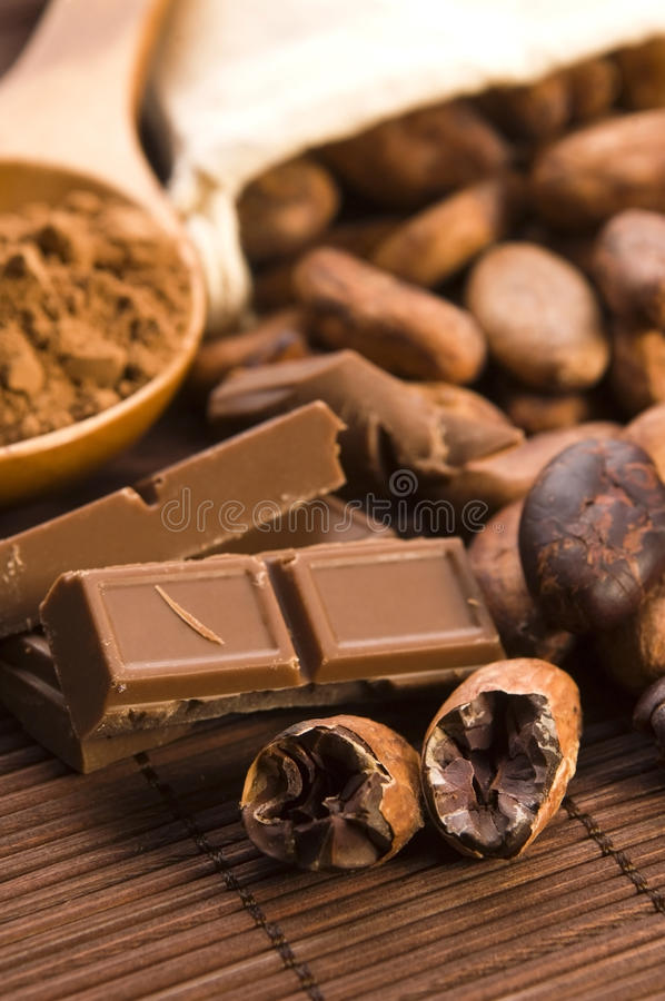 Free Cocoa (cacao) Beans Royalty Free Stock Image - 25254026
