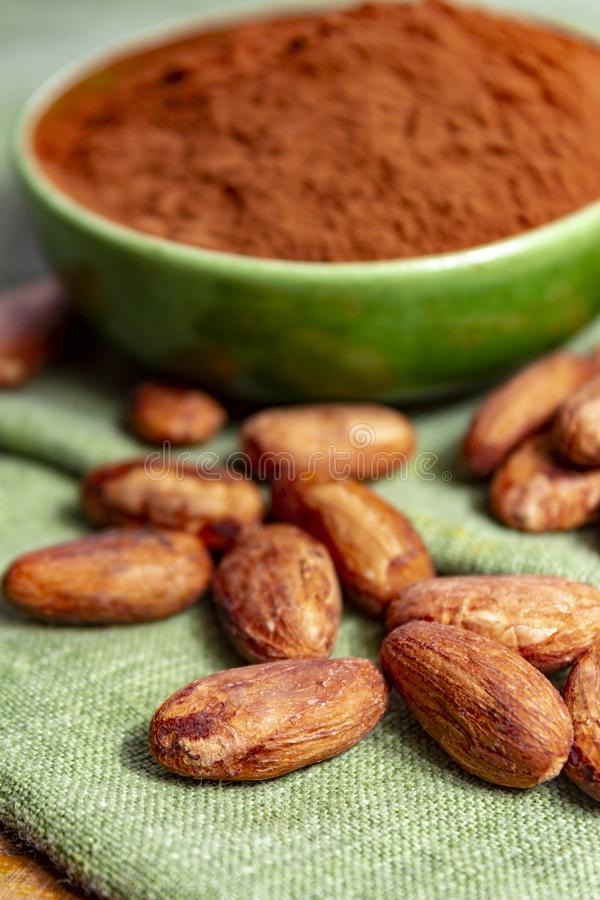 Cocoa or cacao beans and powder, used in hot chocolate drink, chocolate, butter and solids. Close up stock image