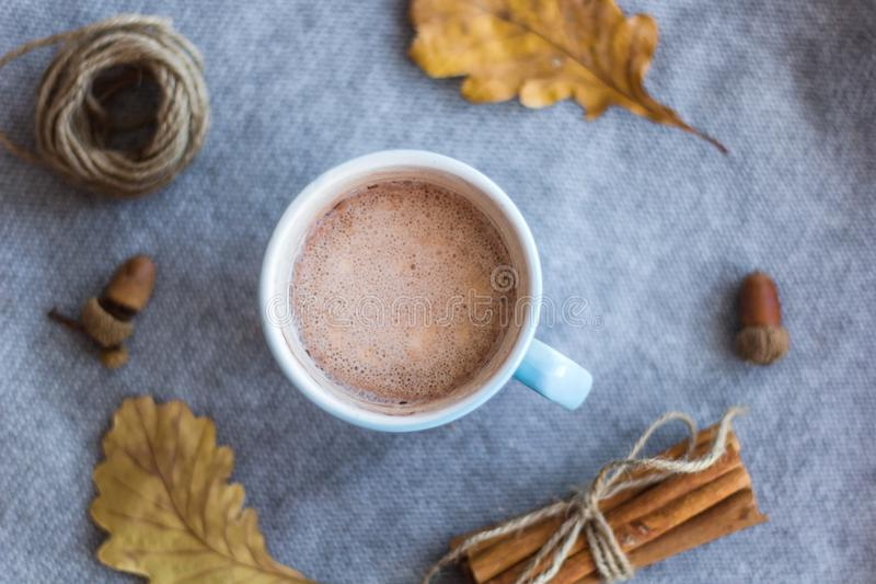 cocoa cup and atumn leaves royalty free stock photography