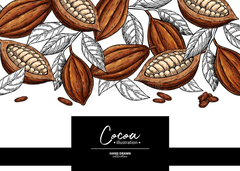 Cocoa frame. Vector superfood drawing template. Fruit, leaf and bean engraving. Organic healthy food. Sketch. Hand drawn chocolate packaging, cacao banner stock illustration