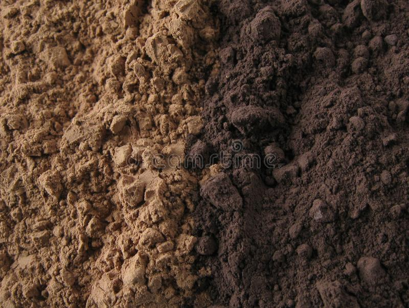 Download Cocoa Powder stock photo. Image of chocolate, beans, closeup - 13590964
