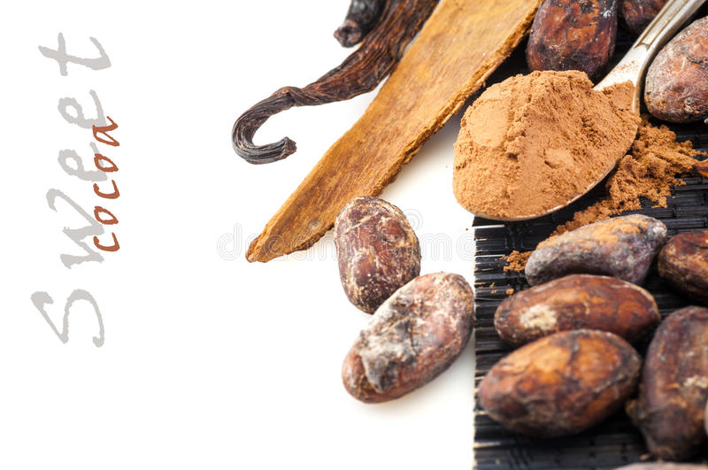 Cocoa powder and beans with cinnamon and vanilla royalty free stock photography