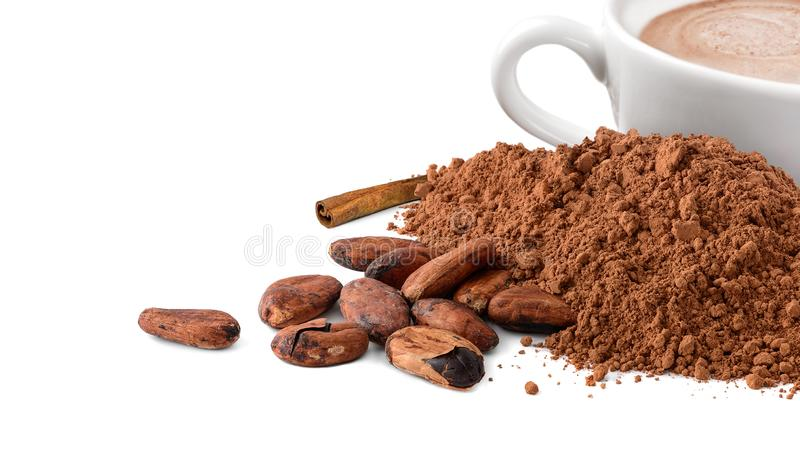 Cocoa powder and beans with cup of hot cocoa isolated on white. Cacao powder, cocoa beans and cup of hot cocoa isolated on white background royalty free stock image