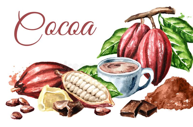 Cocoa products card. Beans, pods, chocolate, butter, hot cocoa drink. Superfood. Watercolor hand drawn illustration, isolated on w vector illustration