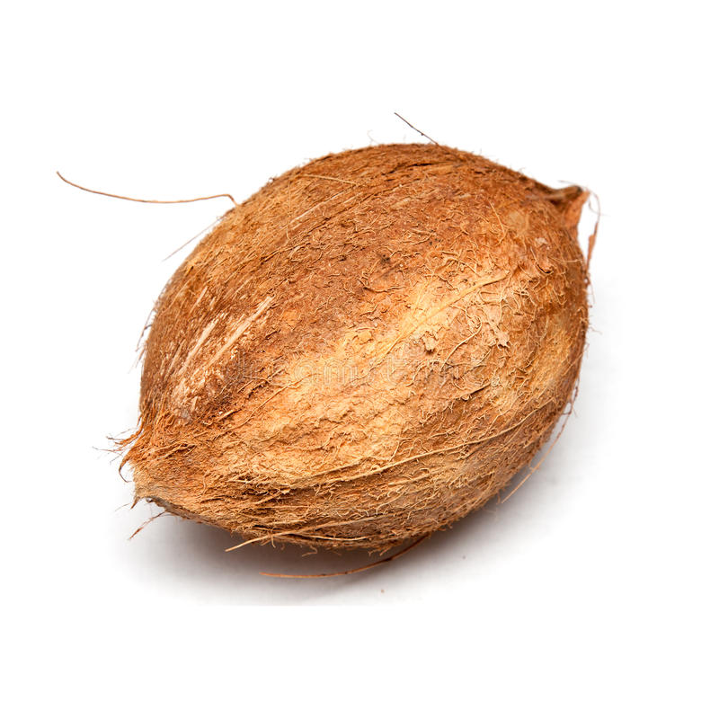 Download Coconut stock image. Image of tropics, background, whole - 11237793