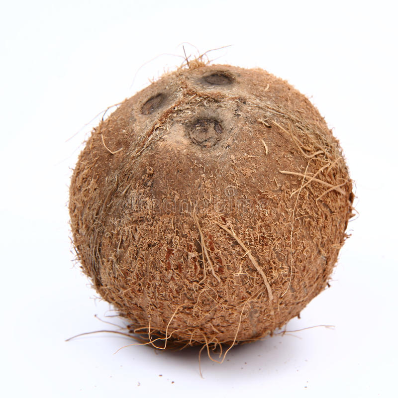 Free Coconut Royalty Free Stock Images - 14728019