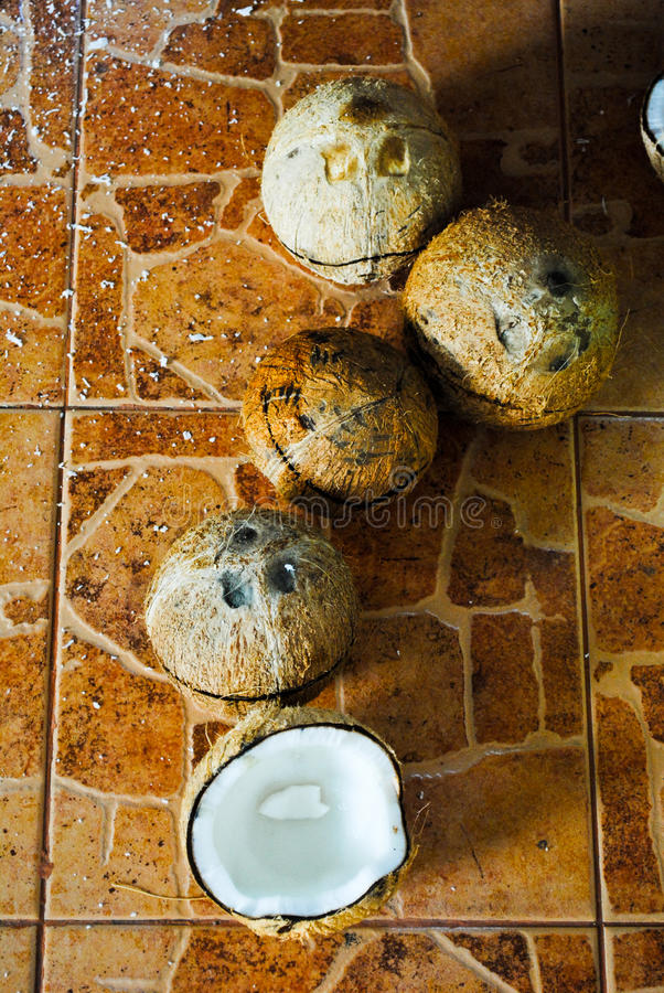 Download Coconut stock photo. Image of coconut, background, break - 18889900