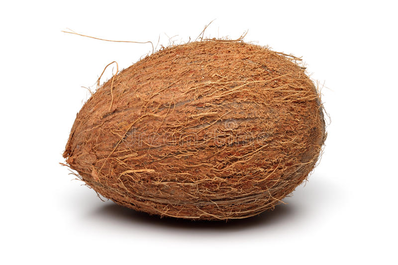 Coconut. On a white background