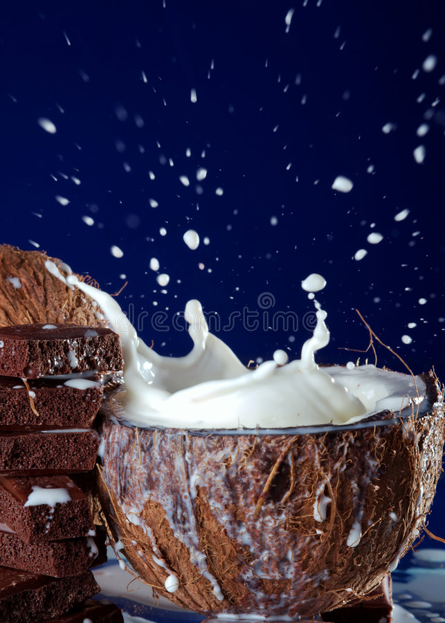 Coconut. The coconut palm tree gives to people many the necessary things stock photo