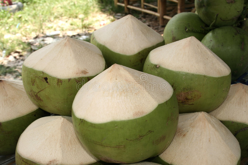 Coconut. Fruits sold nearby a roadside stall stock image