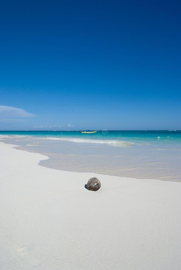 Coconut beach royalty free stock photos
