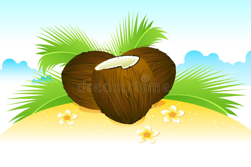 Download Coconut on Beach stock vector. Image of refreshing, leisure - 20198182