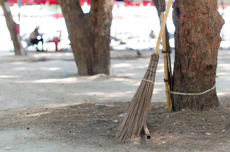 Coconut broom put it on the tree near beach area stock images