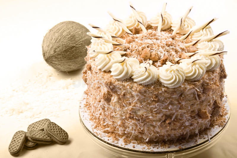 Download Coconut cake stock photo. Image of cake, birthday, desert - 16516560