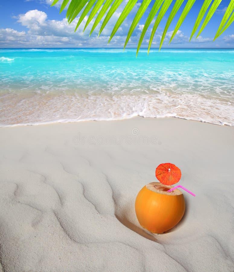 Coconut on Caribbean beach straw juice cocktail stock photos