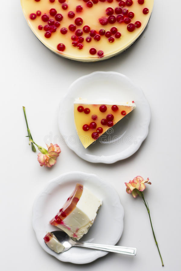 Coconut cheesecake with currants. Without baking stock photos