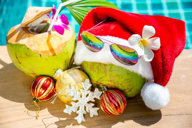 Coconut in Christmas Santa hat with festive decoration on side of swimming pool - Holiday tropical concept royalty free stock images