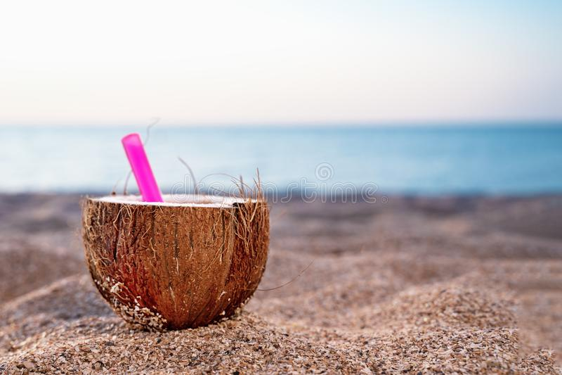 Coconut cocktail at the beach. Pink straw in coconut set on the sand against the blue sky and sea. Copy space, outdoors.  stock image