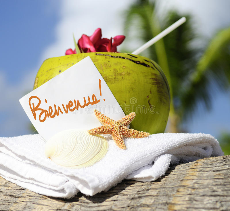 Download Caribbean Paradise Beach Coconuts Cocktail Stock Photo - Image of landscape, cancun: 30315062